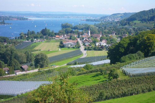 View of Mammern and Lake Constance